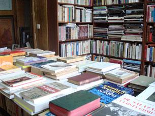 Estudo do ISCTE será publicado no próximo ano. Foto: Ana Romão Moura