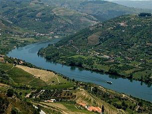 Região do Douro é a mais antiga paisagem vinhateira regulamentada do mundo Foto: DR