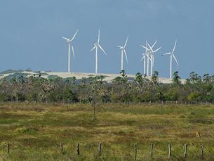 Portugal registou uma das maiores subidas de energias renováveis da UE Foto: Arquivo JPN