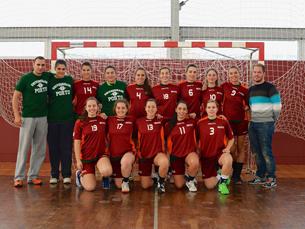 A final de andebol é disputada a 10 de abril, às 18h, no Pavilhão Municipal da Maia Foto: Centro Desportivo da UP