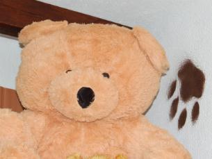 O espaço é dedicado aos Bears e simpatizantes Foto: Teresa Castro Viana
