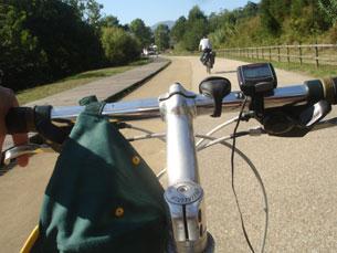 Os ciclistas percorreram cerca de 170 kms de Viana até Santiago de Compostela Foto: DR