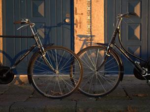 As oficinas de restauro de bicicletas começam a ressurgir pelas ruas da Baixa do Porto Foto: VeloCulture