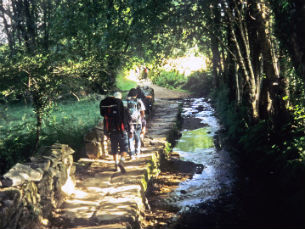 Seja por desafio pessoal ou por retiro espiritual, são cada vez mais os que se aventuram a caminhar Foto: DR