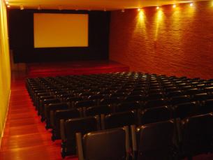 O projecto para a criação de uma cinemateca no Porto é defendida pelo Ministério da Cultura Foto: DR