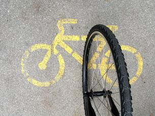 Autores do plano sublinham importância da utilização da bicicleta Foto: SXC