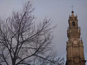 Comemorações do aniversário dos Clérigos querem incluir reabilitação da Torre, Igreja e Enfermaria Foto: Joana Nunes/Arquivo JPN