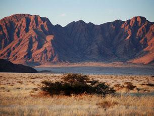 Trabalho da arquitecta Cristina Salvador é inspirado no deserto do Namibe Foto: Flickr