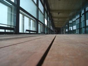 O Encontro de Juventude do Porto ocorre no Edifício Transparente Foto: Arquivo JPN