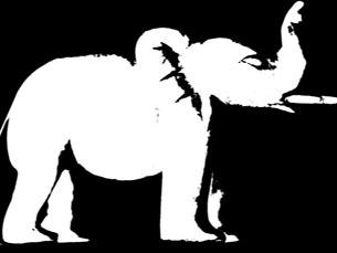 A Viagem do Elefante espera conquistar os menos apreciadores da escrita de José Saramago Foto: DR