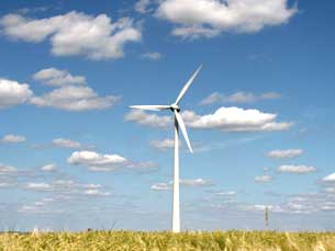 45% da electricidade consumida no Norte tem origem renovável Foto: Wagner Christian
