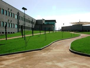 Universidade do Minho anulou o doutoramento da docente do ESEIG Foto: DR