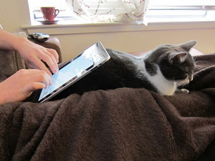 O novo jogo para iPad permite a interação entre dono e animal Foto: Veronica Belmont  / Flickr