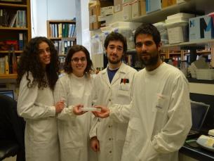 Jovens do INEB escrevem páginas na história da biomedicina através de um estômago e intestino em miniatura Foto: Rita Gordo