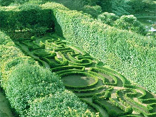Jardim Botânico do Porto reabre após um período de obras Foto: Jardim Botânico