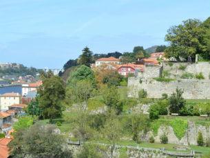O Jardim das Virtudes tem a particularidade de ser vertical Foto: Joana Domingues