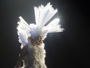 Gaga actuou na sexta