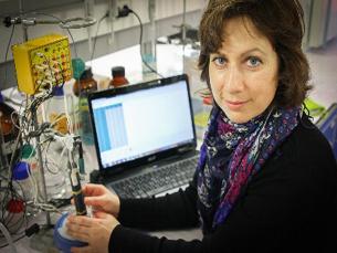 A língua eletrónica tem sensores que substituem as papilas gustativas Foto: DR