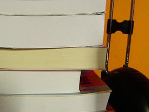 Isabel da Nóbrega é a autora premiada pela SPA em 2008 Foto: Clarissa Rossarola / Flickr