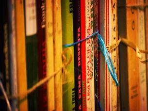 Os visitantes vão poder vender e comprar as mais variadas obras literárias Foto: Arquivo JPN