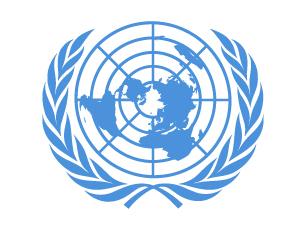 Juristas, analistas políticos e até motoristas são algumas das vagas que a ONU está a disponibilizar Foto: DR