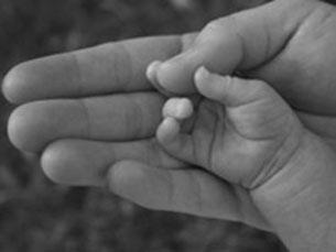 Crianças adoptadas continuam a sofrer preconceito Foto: Arquivo JPN