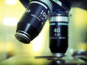 """Estudo conclui que nova combinação terapêutica permite aos doentes """"viverem mais e melhor"""" Foto: SXC"""