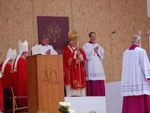 """Bento XVI pediu aos portuenses que sejam """"testemunhas de Jesus"""" Foto: Sofia Maciel"""