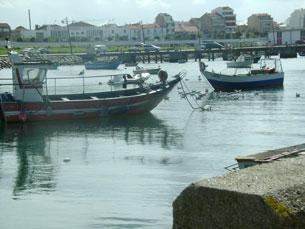 Pescadores e armadores mantêm paralisação para esta sexta