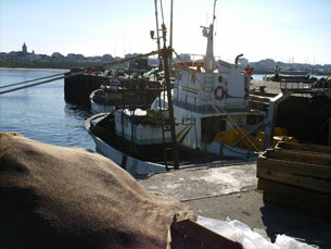 Paralisação do sector das pescas iniciou