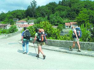 A OCDP organiza a peregrinação há cerca de 30 anos Foto: Xacobeo