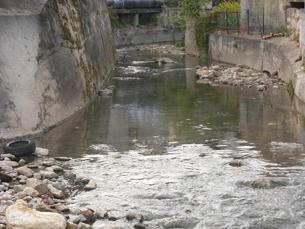 As águas do rio Tinto apresentam níveis de poluição elevados Foto: Rosa Carvalho