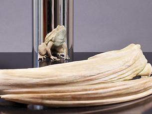 """Uma imagem da escultura """"Rejuvenation"""" tornou"""