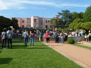 Serralves em Festa é o maior festival de expressão artística em Portugal, um dos maiores da Europa Foto: Arquivo JPN