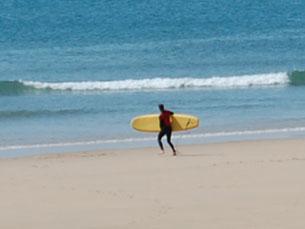 A Associação Nacional de Surfistas acredita que o surf está a evoluir em Portugal Foto: Tânia Monteiro