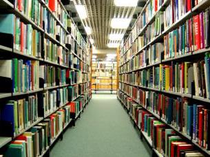 Os alunos dispõem de mais de 20 mil publicações de acesso livre Foto: Arquivo JPN