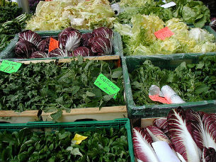 Os pesticidas podem ter influência nos comportamentos das próximas gerações Foto: Flickr/nitatravels