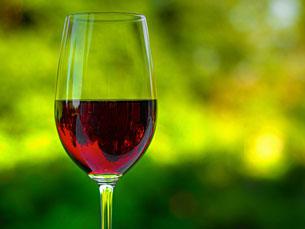 Wine Only é a primeira empresa do Gabinete de Pré