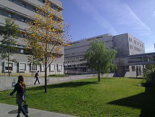 Os assaltos têm ocorrido junto das imediações da Faculdade de Engenharia da Universidade do Porto, no pólo da Asprela Foto: Arquivo JPN