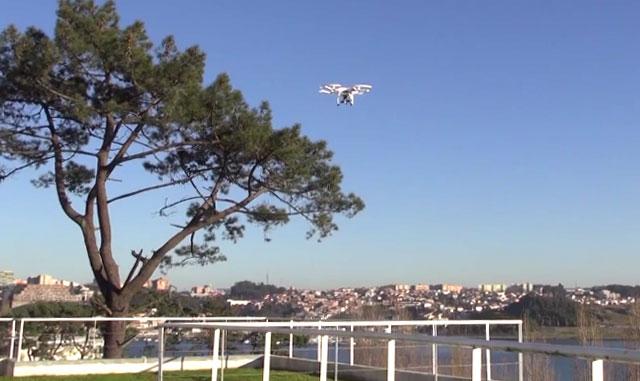 Invicta Drones