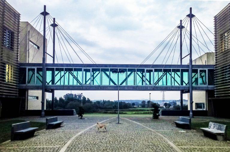 A reforma do Politécnico prevê a transformação da ESEIG de Vila do Conde em duas novas escolas ligadas ao Turismo e ao Design