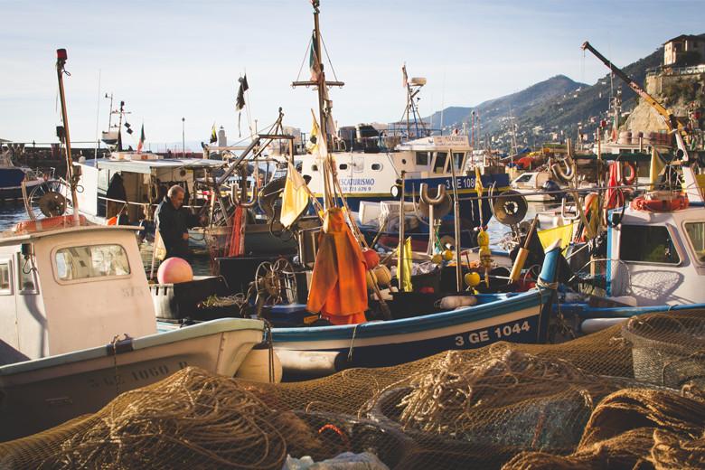 No âmbito do projeto CientAmostra foram certificados 21 pescadores profissionais do Alto Minho.