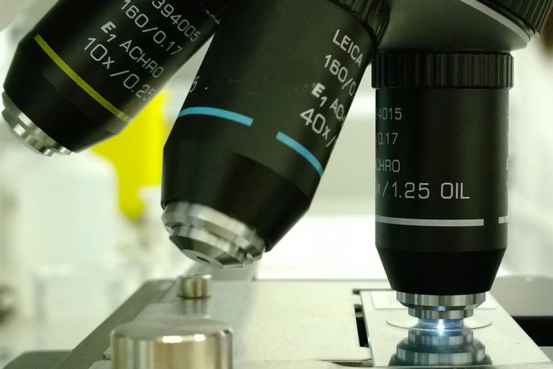 A UP surge em quinto lugar com quatro pedidos feitos ao Instituto Europeu de Patentes