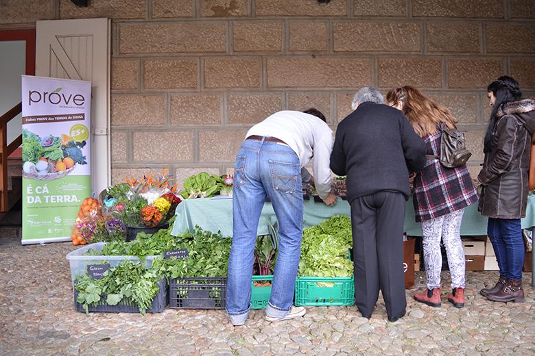 Serralves recebeu ontem o Mercado de Primavera.