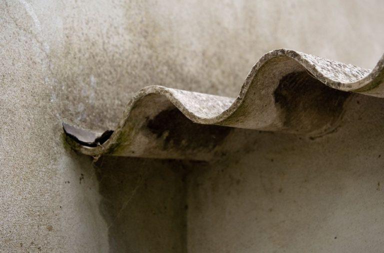 O amianto é uma substância que foi muito usada na construção de edifícios. A Quercus tenta alertar os deputados para o perigo deste material