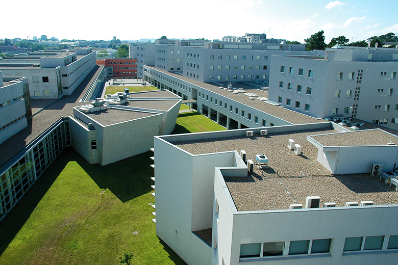 Um jovem morreu esta madrugada junto à Faculdade de Engenharia do Porto
