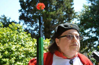 Marcha das cerimónias do 42º aniversário da revolução dos cravos, no Porto