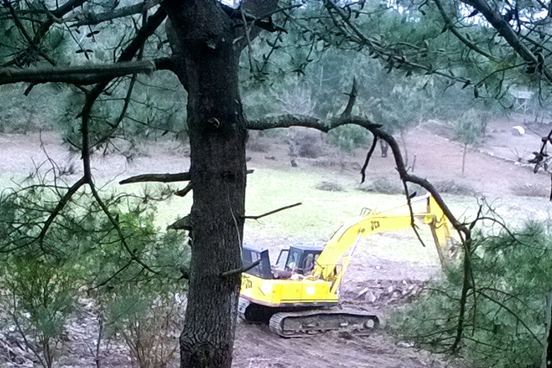A Quercus avançou com uma ação judicial de embargo de obra do festival Marés Vivas. O evento vai decorrer num terreno ao lado da Reserva Natural do Estuário do Douro