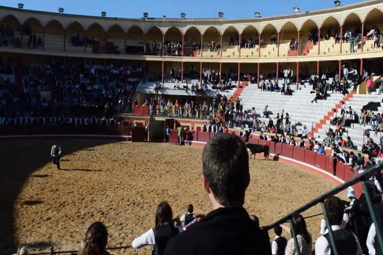 A proposta de alteração da garraiada foi feita ao Conselho de Veteranos pela Comissão Organizadora da Queima das Fitas de Coimbra