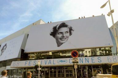 Festival de Cannes começa esta quarta-feira e premeia o cinema mundial.